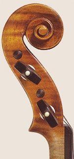 particolare di violino Grisales