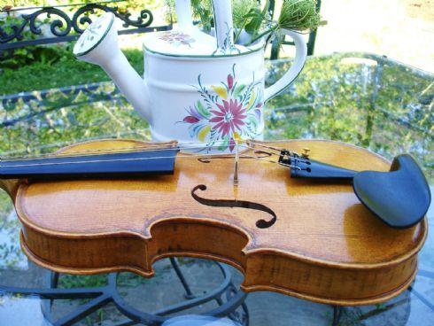violino Carlson&Neumann