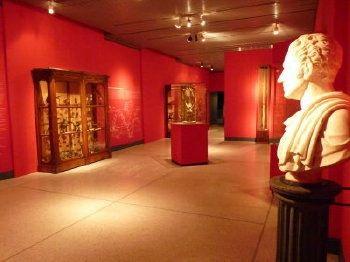 Museo di Storia Naturale a Cremona